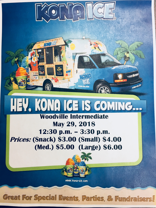 Kona Ice Snow cone flyer
