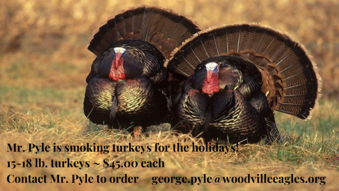 Holiday Turkeys